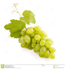 WARNING! These grapes have not been screened for toxins